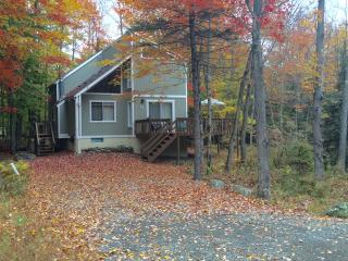 Peaceful Pocono Lake Retreat ~ Fplc, Fpit, Wifi - Pocono Lake vacation rentals
