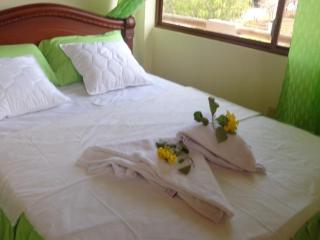 Welcome to Miconia Hostel - Puerto Ayora vacation rentals