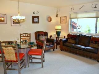Wonderful 3 bedroom Condo in Jackson - Jackson vacation rentals