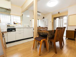 Perfect House with Internet Access and A/C - Bunkyo vacation rentals
