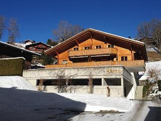 Am Reeti - Grindelwald vacation rentals