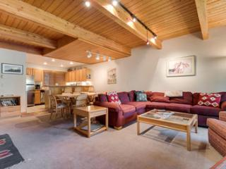 Riverside B103 (2 bedrooms, 2 bathrooms) - Telluride vacation rentals