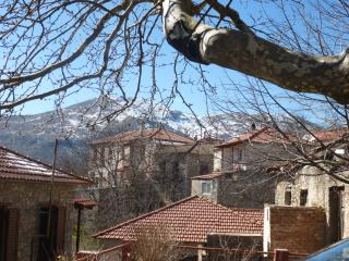 Nice House with Television and Mountain Views - Chrysovitsi vacation rentals
