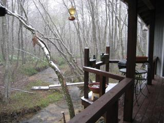 WOW $100* 'Honey for the Bears' by Meadow Creek : - Blue Ridge vacation rentals