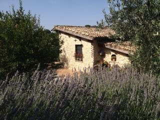 Perfect 2 bedroom Villa in Poggio Mirteto - Poggio Mirteto vacation rentals