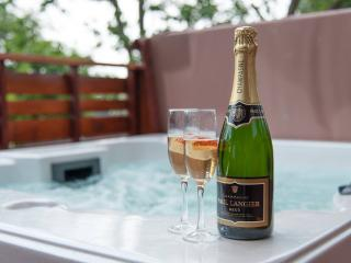Superior Hot Tub Lodge - 102785 - Newton Stewart vacation rentals