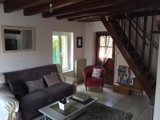 Maison charmante et atypique en centre ville - Amboise vacation rentals