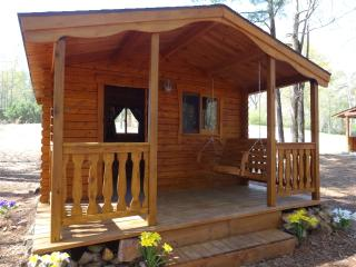 1 room Cedar Log Cabin #1 near Birmingham Alabama - Vandiver vacation rentals
