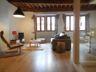 In the heart of the old city 63m2 - Annecy vacation rentals