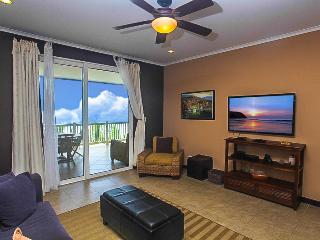 The Palms 502 Beach View - Copey vacation rentals