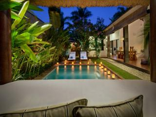 VILLA SAUDARA 1 - PRIME LOCALE, ONLY 75M TO BEACH - Seminyak vacation rentals