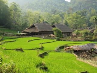 Tay House home stay in Ha Giang - Ha Giang vacation rentals