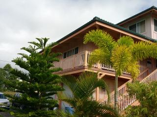 Nice Studio near Kehena Beach - sleeps 4 - Pahoa vacation rentals
