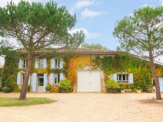 Beautiful House with Internet Access and DVD Player - La Sauziere-Saint-Jean vacation rentals