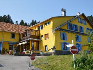 Le Schmalick (Chamois, 10/12 pers.) avec piscine - Gerardmer vacation rentals