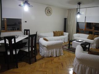 Nice Condo with Television and Microwave - Ankara vacation rentals