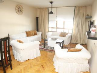 Nice Condo with Dishwasher and Safe - Ankara vacation rentals
