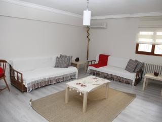Evodak Apartment D 2A - Ankara vacation rentals