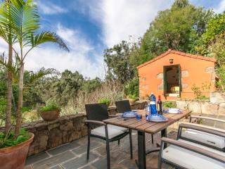 Holiday cottage with shared pool in Firgas GC0020 - Vega de San Mateo vacation rentals