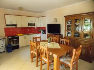 Terrace apartment by the sea - up to 11 persons - Kustici vacation rentals