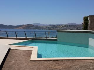 BODRUM ultra luxury private swimming pool ID 335 - Bodrum vacation rentals
