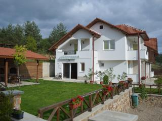 Nice Guest house with Balcony and Mountain Views - Berovo vacation rentals