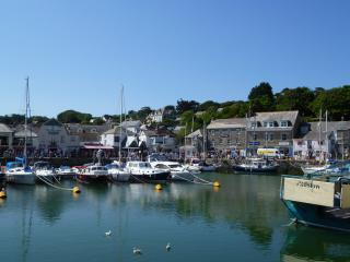St.Saviours Apartment - No.3 - Padstow vacation rentals