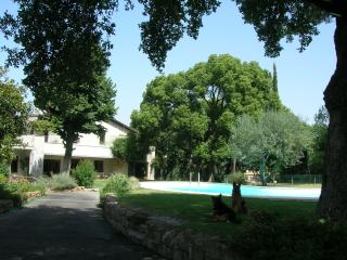 Guest House La Canfora Verde - Rome vacation rentals