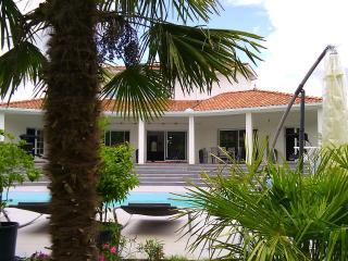 Magnifique villa avec piscine idéale pour - Lapeyrouse vacation rentals