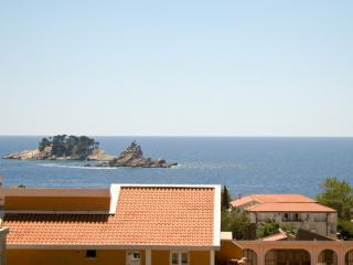 3-bedroom apartment in Petrovac / to sea 300m - Petrovac vacation rentals