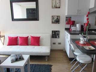 A3 Nice apartment, cozy!! 1B1B up to 3 - Santiago vacation rentals