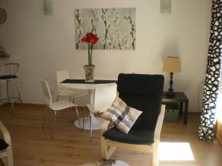 Cozy Condo with Television and DVD Player - Formiguères vacation rentals