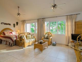 Ocean Dream Artist Loft Beach Front Kite Drive 101 - Cabarete vacation rentals