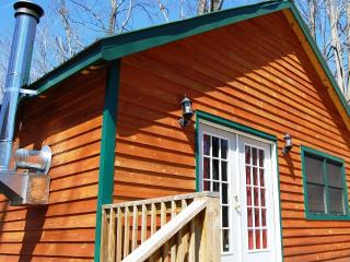 Revelles River Retreat - The Moose - Bowden vacation rentals