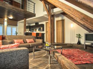 Historical Center - 3bdr Penthouse|Rybna Residence - Prague vacation rentals