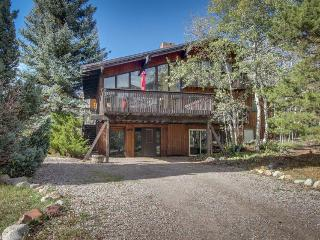 Cozy mountain lodge w/ dog-friendly accommodations - Aspen vacation rentals