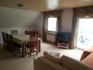 Nice Condo with Housekeeping Included and Television - Linz am Rhein vacation rentals