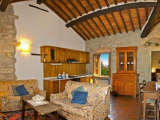 Lovely 2 bedroom Apartment in San Pietro a Cegliolo - San Pietro a Cegliolo vacation rentals