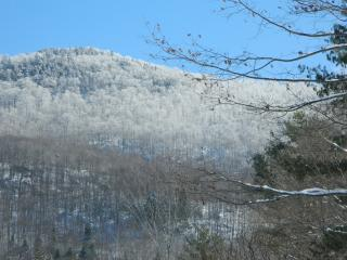 ROSE'S COZY MOUNTAINVIEW-A- - Rutland vacation rentals