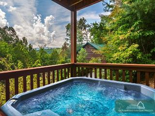 Americana  View Privacy King Beds Pool Access Hot Tub Wii  Free Nights - Gatlinburg vacation rentals
