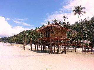 RAJA AMPAT: Papuarts Alter-Native Stay - Waisai vacation rentals