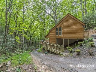 Cozy Hidden 1 Bedroom Cabin Just 5 Minutes Away from Downtown Gatlinburg - Gatlinburg vacation rentals