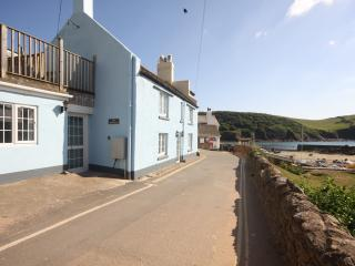 Charming 3 bedroom Cottage in Hope Cove - Hope Cove vacation rentals