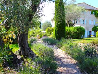 Near Grasse, on Famed Côte d'Azur, 5 Bedrooms, Heavenly Garden & Pool - Entrevennes vacation rentals