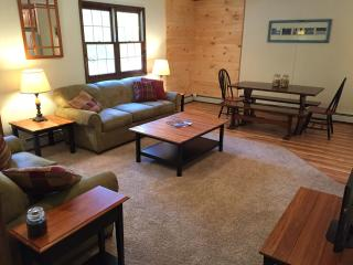 Quick Walk to Ski Lodge at Okemo -  Townhome A - Ludlow vacation rentals