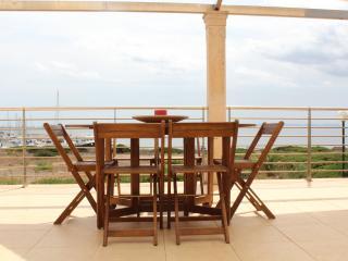 Spacious Villa with Internet Access and Grill - Sa Rapita vacation rentals