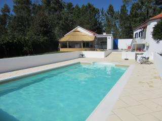 HEATED SWIMMING POOL  VILLA - Pedrogao Grande vacation rentals
