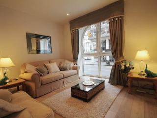 Beautiful 2 bedroom Glasgow Apartment with Internet Access - Glasgow vacation rentals