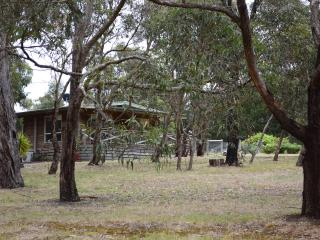 Self contained cottage in peaceful rural setting - Gisborne vacation rentals