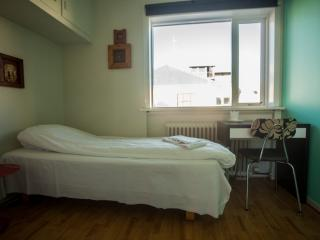 Loki 101 Guesthouse - Single rooms - Reykjavik vacation rentals